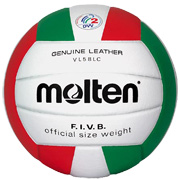 L'avatar di Volley